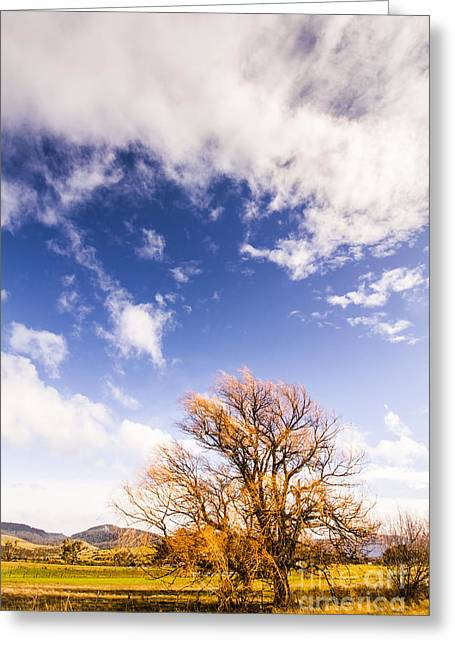Autumn Fires Greeting Card