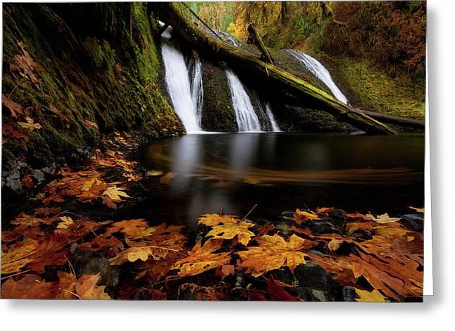 Autumn Flashback Greeting Card