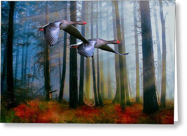 Greeting Card featuring the photograph Autumn Flight by Diane Schuster