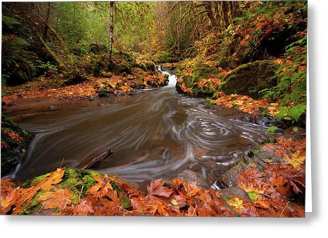 Autumn Flow Greeting Card