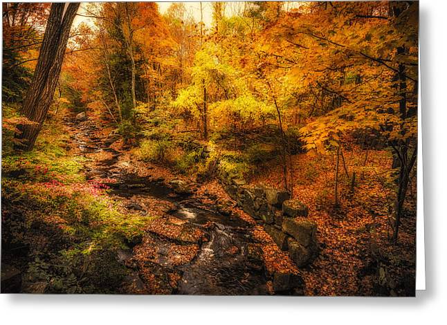 Greeting Card featuring the photograph Autumn Flow by Robert Clifford
