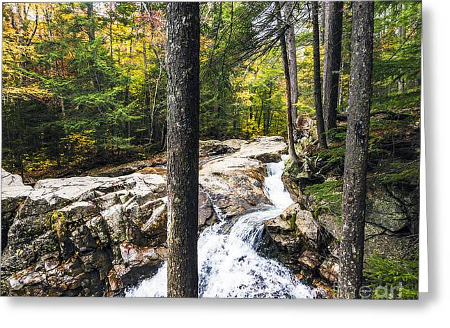 Greeting Card featuring the photograph Autumn Flows by Anthony Baatz