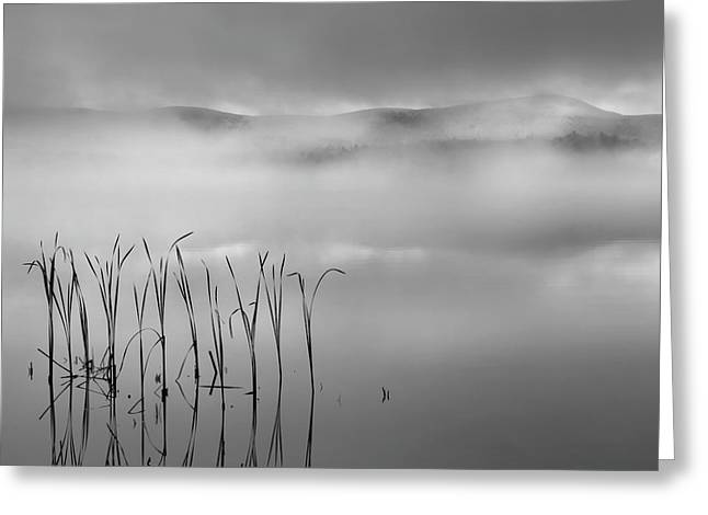 Greeting Card featuring the photograph Autumn Fog Black And White Square by Bill Wakeley