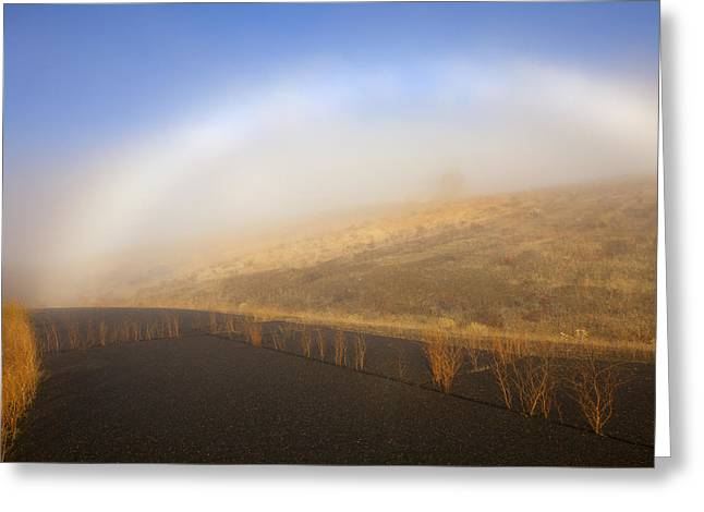 Autumn Fog Bow Greeting Card by Mike  Dawson
