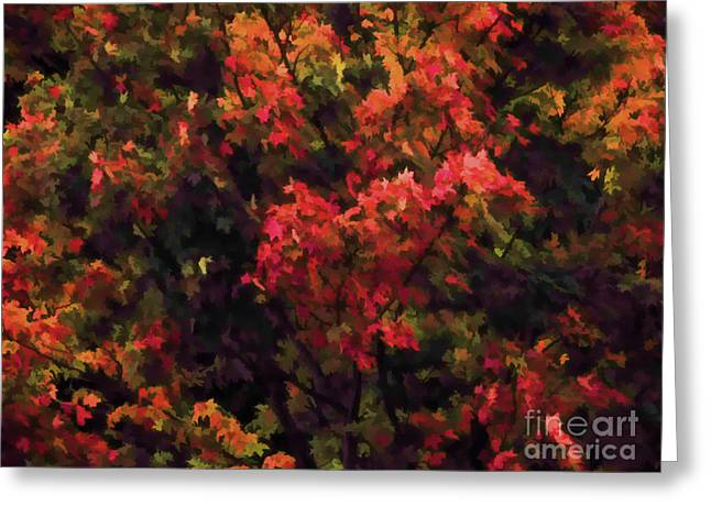 Autumn Foliage 4 Greeting Card by Lanjee Chee