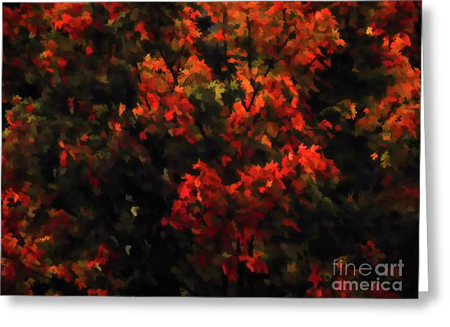 Autumn Foliage 5 Greeting Card by Lanjee Chee