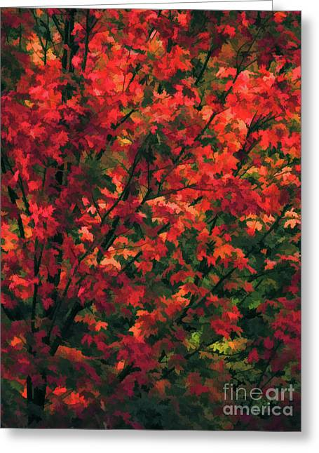 Autumn Foliage 6 Greeting Card by Lanjee Chee