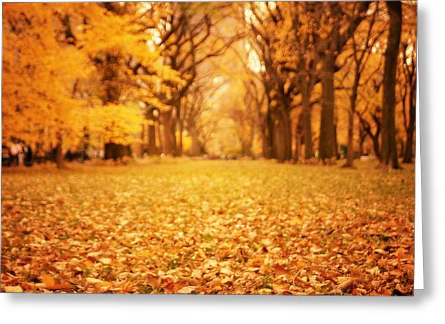 Yellow Leaves Greeting Cards - Autumn Foliage - Central Park - New York City Greeting Card by Vivienne Gucwa