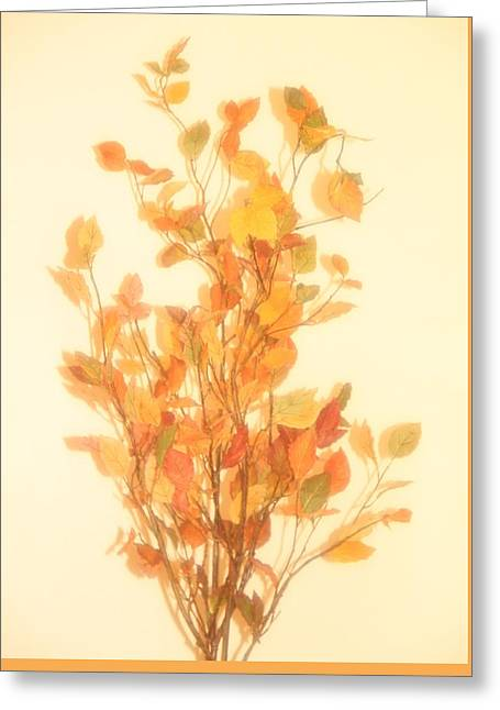 Autumn Foliage Fantasy Greeting Card