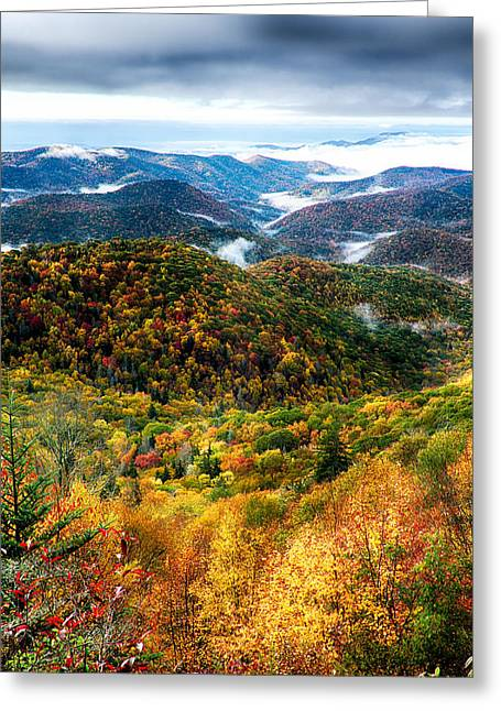 Autumn Foliage On Blue Ridge Parkway Near Maggie Valley North Ca Greeting Card