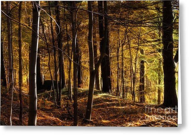 Autumn Forest Greeting Card by Lutz Baar