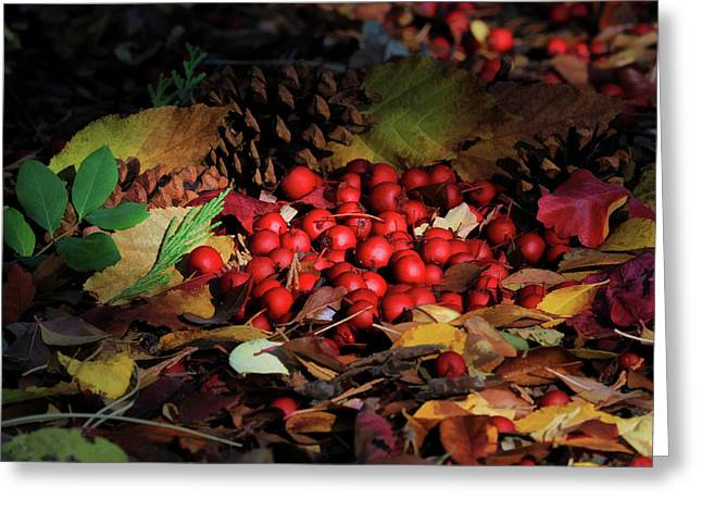 Autumn Gatherings Greeting Card