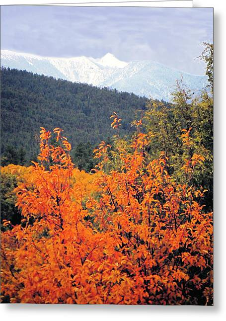 Autumn Glory And Mountain Cathedral Greeting Card by Anastasia Savage Ealy