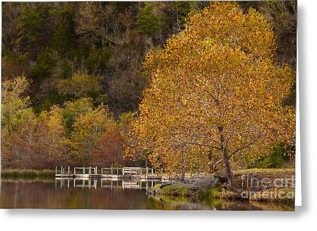 Greeting Card featuring the photograph Autumn Glory In Beaver's Bend by Tamyra Ayles