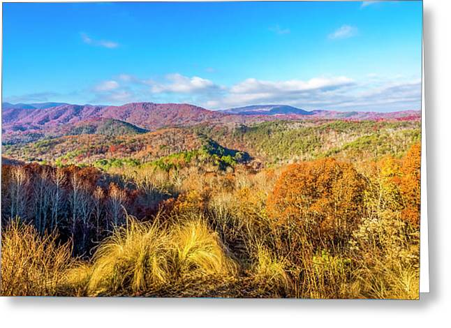 Autumn Glory Greeting Card by Todd Reese