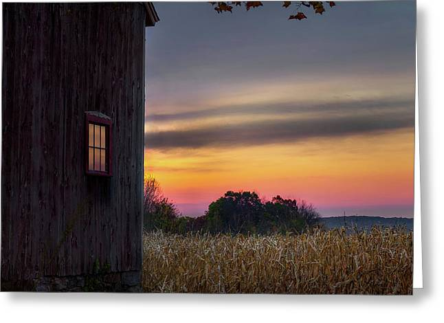 Autumn Glow Square Greeting Card by Bill Wakeley