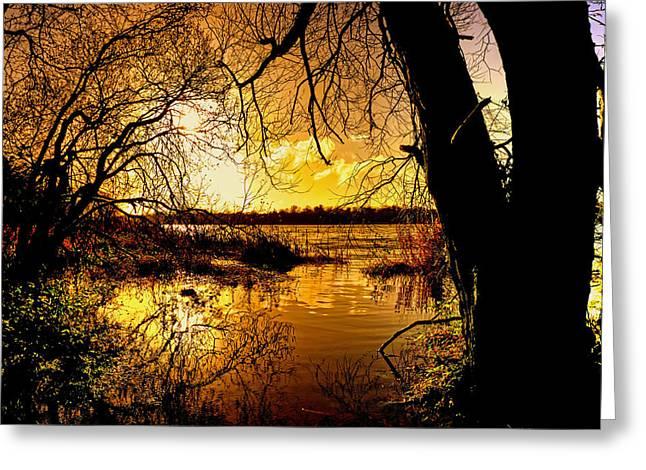 Neagh Greeting Cards - Autumn Gold Greeting Card by Kim Shatwell-Irishphotographer