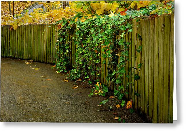 Autumn Green-0090 Greeting Card by Sean Shaw