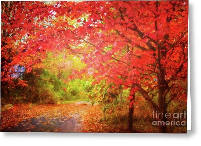 Glorious Foliage On The Rail Trail Greeting Card