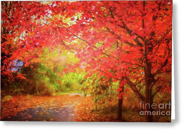 Glorious Foliage On The Rail Trail Greeting Card