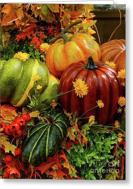 Autumn Grouping Greeting Card by Jennifer White