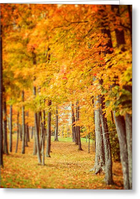 Autumn Grove  Greeting Card by Lisa Russo