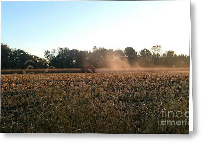 Autumn Harvest At Dusk Brown County Indiana Greeting Card by Scott D Van Osdol