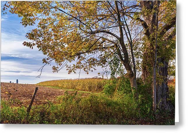 Autumn Harvest Landscape Greeting Card