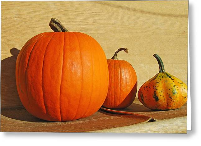 Autumn Harvest Still Life Greeting Card by Tony Ramos