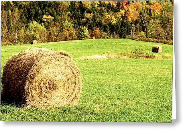 New England Fall Shots Greeting Cards - Autumn Hay Bales  Greeting Card by Sherry  Curry