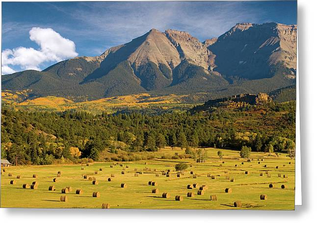 Autumn Hay In The Rockies Greeting Card