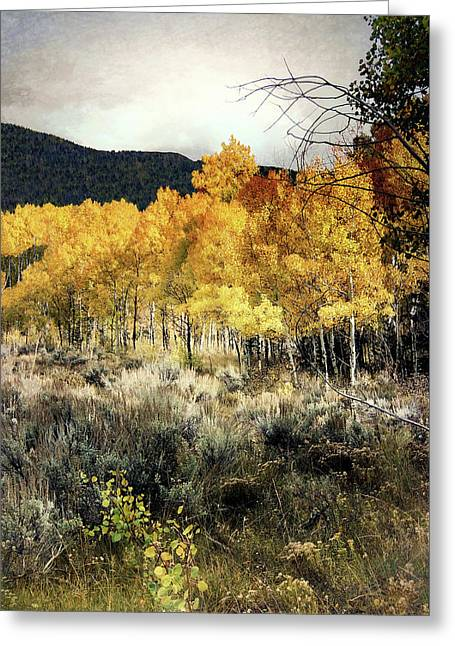 Autumn Hike Greeting Card by Jim Hill