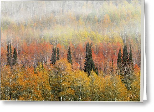 Autumn Hillside Greeting Card by Leland D Howard