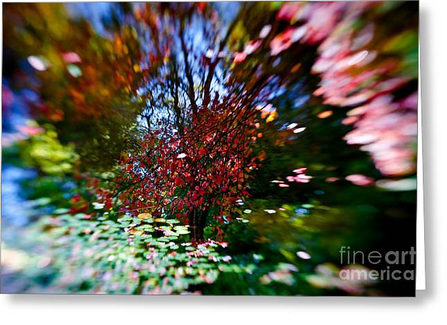Autumn Impressions 2 Greeting Card by Venetta Archer