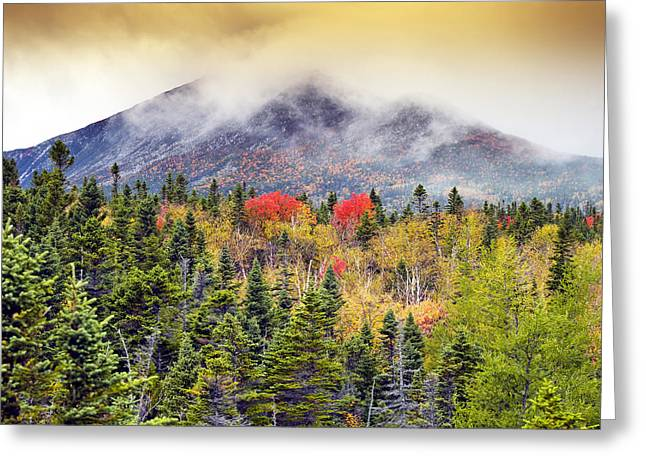 Autumn In Baxter State Park Maine Greeting Card by Brendan Reals