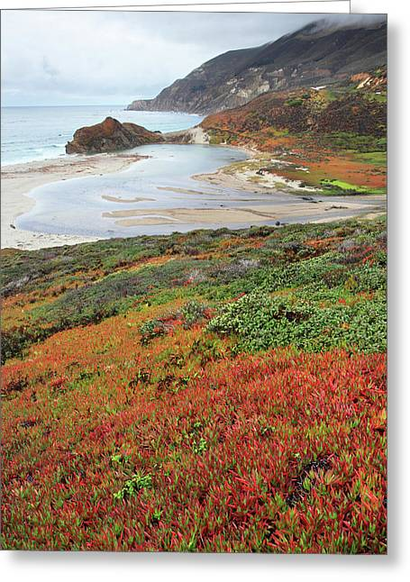 Autumn In Big Sur California Greeting Card by Pierre Leclerc Photography