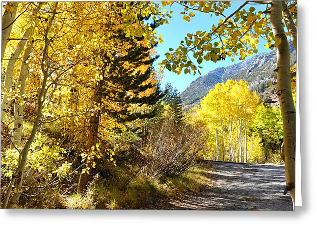 Greeting Card featuring the photograph Autumn In Bishop Creek  by Dung Ma