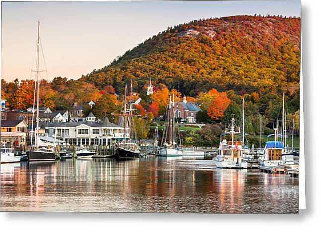 Autumn In Camden Harbor Greeting Card by Benjamin Williamson