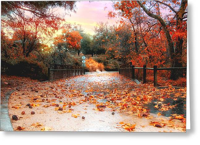 Autumn In Discovery Lake Greeting Card