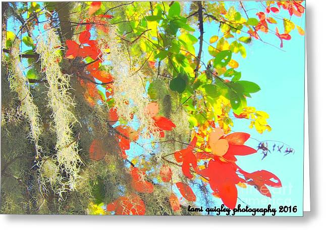 Autumn In Dixie  Greeting Card