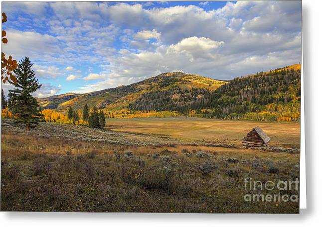 Autumn In Joe's Valley Greeting Card by Spencer Baugh