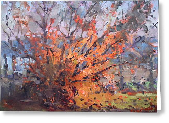 Autumn In Late Evening Greeting Card by Ylli Haruni
