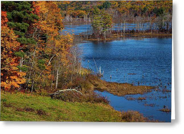 Autumn In Litchfield County Greeting Card