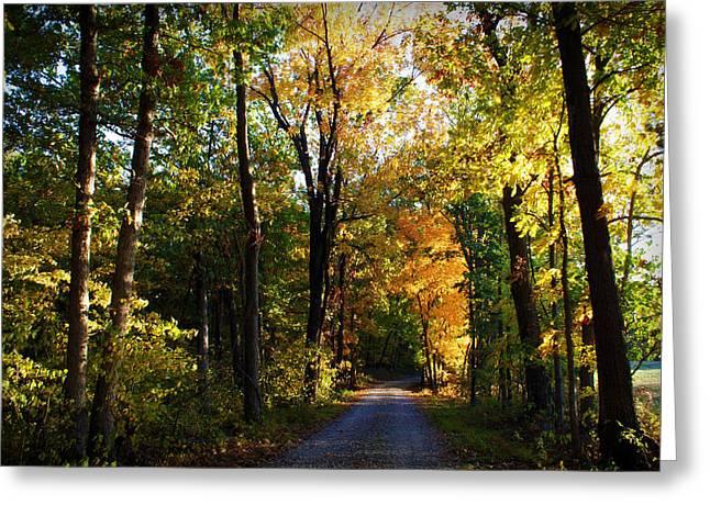 Autumn In Missouri Greeting Card