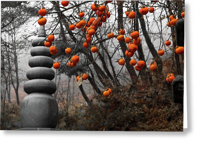 Autumn In Mountains Greeting Card by Peteris Vaivars