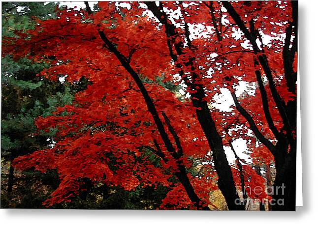 Autumn In New England Greeting Card by Melissa A Benson