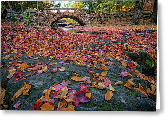 Autumn In New England Greeting Card by Rick Berk