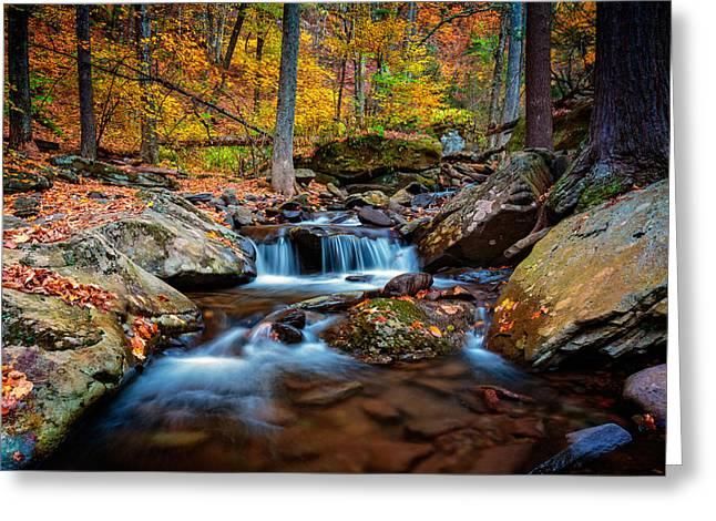 Autumn In New York Greeting Card by Rick Berk