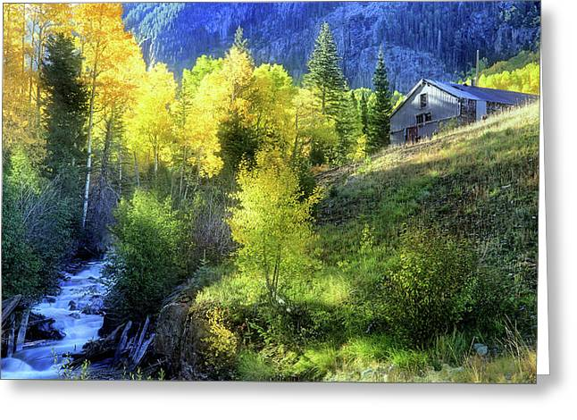 Autumn In Ophir - Colorado - Aspens Greeting Card by Jason Politte