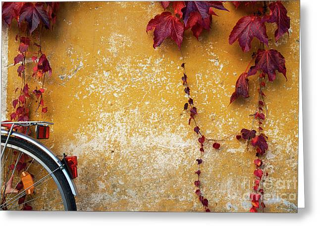 Greeting Card featuring the photograph Autumn In Red by Yuri Santin